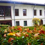 Casa Melik – Muzeul Theodor Pallady