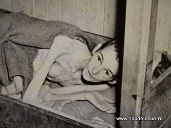 Foto din expozita cu texte şi fotografii de la Biblioteca Păcii şi Muzeul Antirăzboiului din Berlin