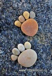 povestile pietrelor