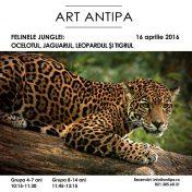 artantipa