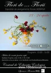 ikebana la botanicajpg