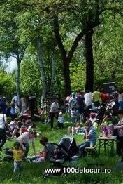 picnic rod