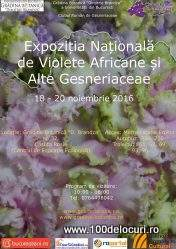violete-la-botanica