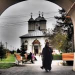 Mănăstirea Pasărea