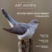 art-antipa