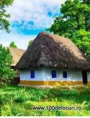 picnic muzeul satului
